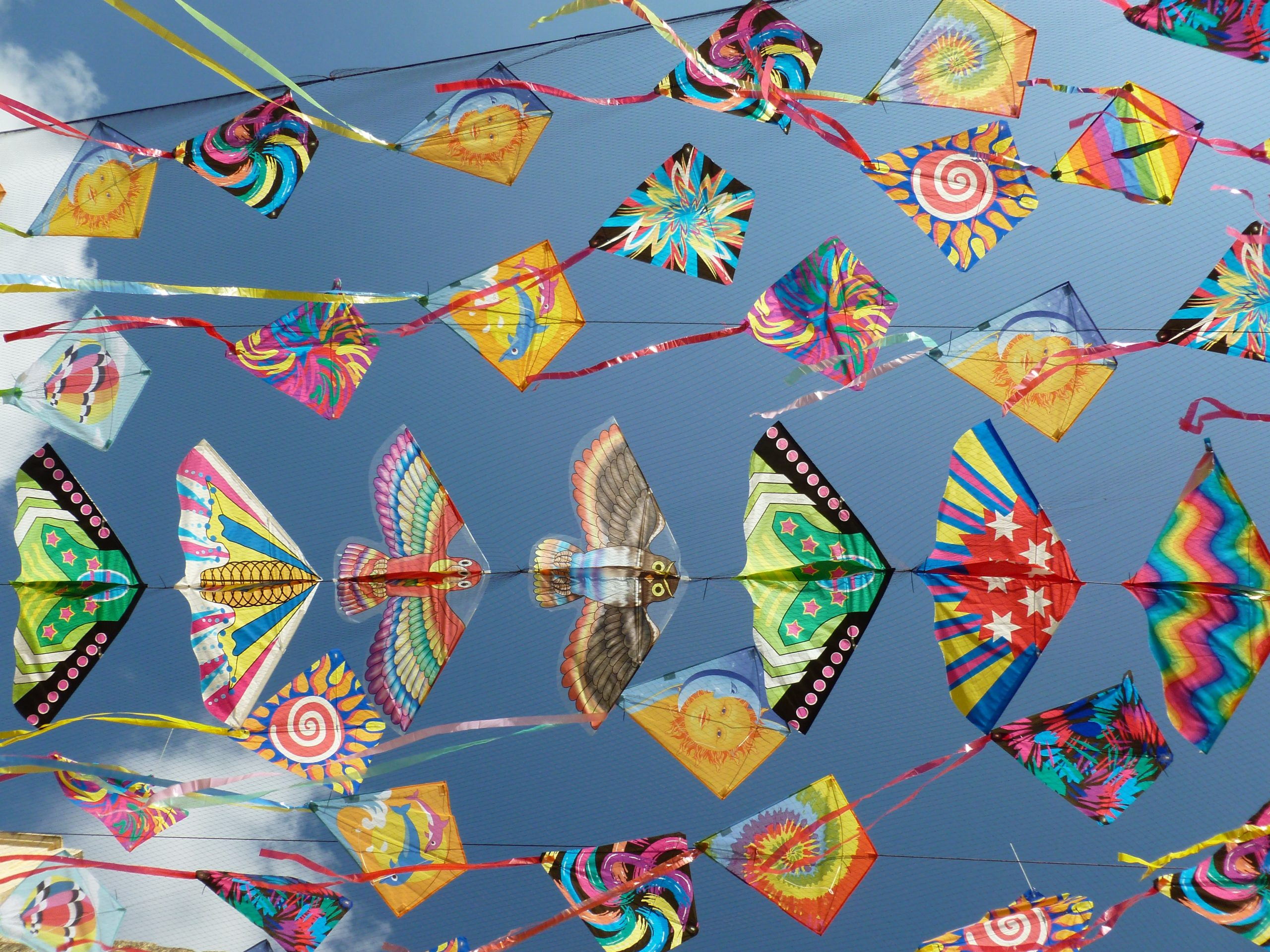 Several colorful kites fly in the air at Kites over Clarksburg